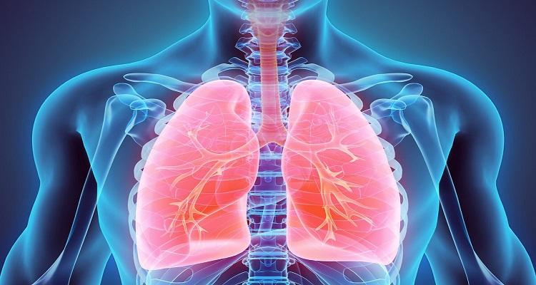 Πνεύμονες: Ποιοι παράγοντες τους γερνάνε πιο γρήγορα