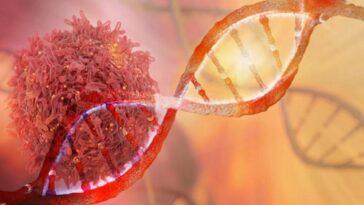 Κορονοϊός: Το γονίδιο που προστατεύει έναντι της σοβαρής Covid-19