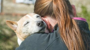 Τι κάνει τόσο ιδιαίτερους τους σκύλους; Η αγάπη, απαντάει η επιστήμη